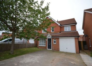 Thumbnail 4 bed detached house to rent in Cowslip Close, Corby