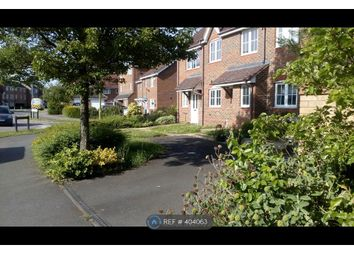 Thumbnail 3 bed terraced house to rent in Campion Road, Hatfield