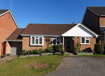 Thumbnail 3 bed detached bungalow to rent in Sandringham Way, Frimley, Camberley