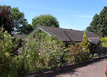 Thumbnail 3 bed detached bungalow for sale in Woodfield Road, Ledbury
