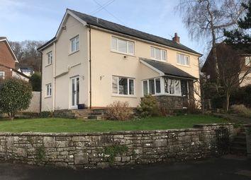 Thumbnail 4 bedroom detached house for sale in Llanbedr Road, Crickhowell