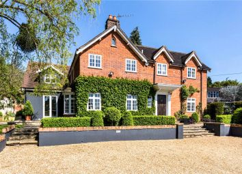 Thumbnail 4 bed equestrian property to rent in Titness Park, Sunninghill, Ascot