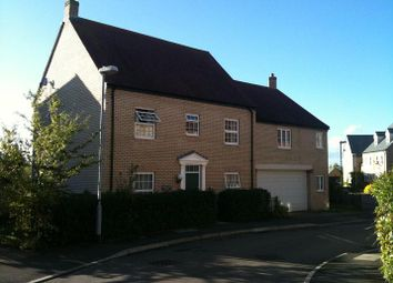 Thumbnail 4 bedroom link-detached house to rent in Brooke Grove, Ely