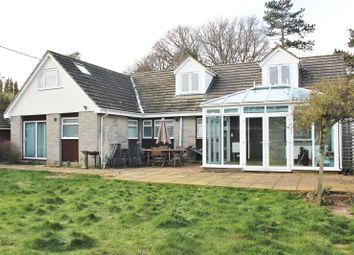Thumbnail 5 bed bungalow for sale in Ash Green Road, Ash Green, Surrey