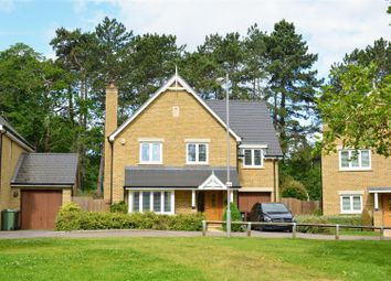 Thumbnail 4 bed detached house to rent in Lulworth Place, Epsom