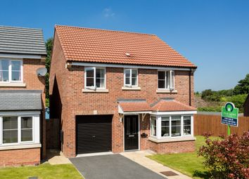 Thumbnail 4 bedroom detached house for sale in Hardwicke Close, York