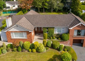 4 bed detached house for sale in Clonallon Road, Warrenpoint, Newry BT34