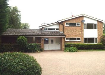 Thumbnail 4 bed detached house to rent in Station Road, Turvey, Bedford