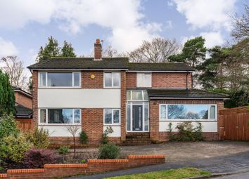 Thumbnail Detached house for sale in Glenwood Avenue, Southampton