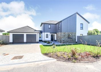 Thumbnail 4 bed detached house for sale in Stanley Court, Parkham, Bideford