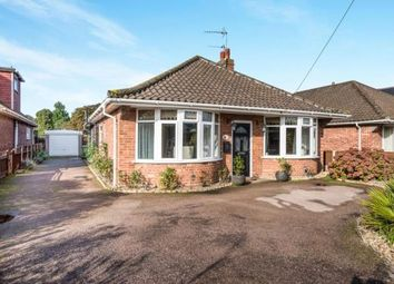 Thumbnail 3 bed bungalow for sale in Norwich, Norfolk