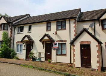 Thumbnail 3 bedroom terraced house for sale in The Lees, Ilfracombe