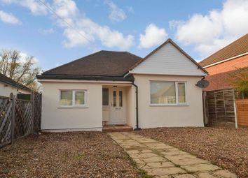 Thumbnail 3 bed detached bungalow to rent in Betterton Road, Rainham