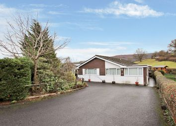Thumbnail 3 bed bungalow to rent in Brecon Road, Builth Wells