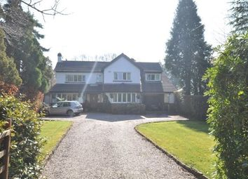 Thumbnail 5 bed property to rent in Gayton Lane, Heswall, Wirral