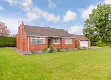 Thumbnail 3 bed detached bungalow to rent in Leigh Road, Leigh