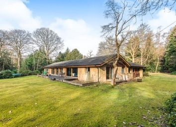Thumbnail 4 bed detached house for sale in Munstead, Godalming, Surrey