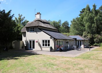 Thumbnail 3 bed cottage for sale in North Ripley, Bransgore, Christchurch