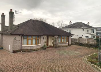 Thumbnail 3 bed detached bungalow to rent in Throstle Grove, Lancaster