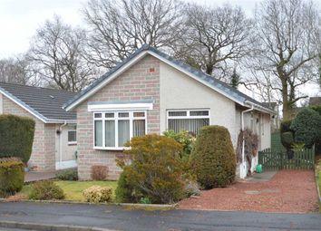 Thumbnail 3 bed bungalow for sale in Daly Gardens, Blantyre, Glasgow