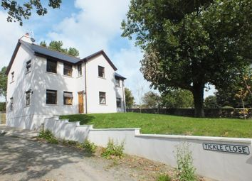 Thumbnail 4 bed detached house for sale in The Feathers, Tickle Close, Ballabeg