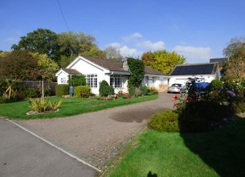Thumbnail 3 bed bungalow for sale in Shaftesbury Road, East Knoyle