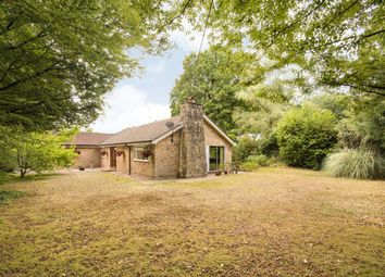 Thumbnail 3 bed detached bungalow for sale in The Ride, Ifold, Ifold