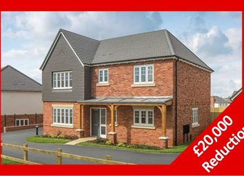 Thumbnail 4 bed detached house for sale in Cypress Road, Rugby
