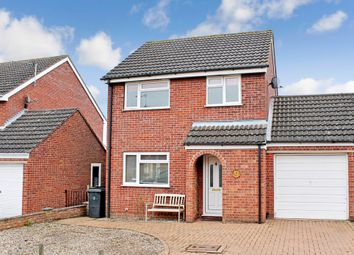Thumbnail 3 bedroom detached house for sale in Henry Ward Road, Harleston