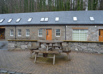 Thumbnail 3 bed detached house to rent in Kinfauns, Perthshire