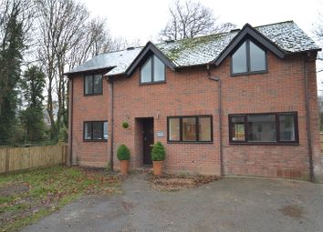 Thumbnail 4 bed detached house to rent in Winton Close, Winchester, Hampshire