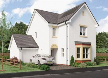 "Thumbnail 4 bedroom detached house for sale in ""Esk Detached"" at East Kilbride, Glasgow"