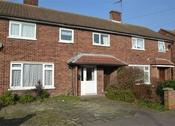 Thumbnail 6 bed end terrace house to rent in Hickory Avenue, Colchester, Essex