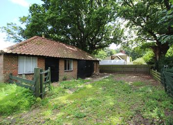 Thumbnail 1 bedroom property for sale in High Green, Brooke, Norwich