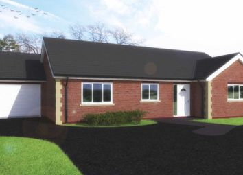 Thumbnail 3 bed bungalow for sale in Northampton Road, Rushden