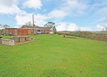 Thumbnail 3 bed detached house for sale in Kennford, Exeter