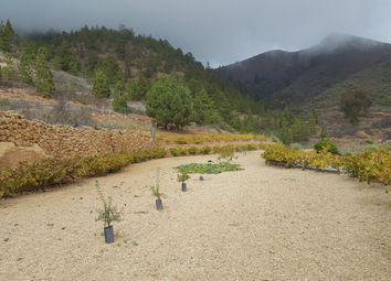 Thumbnail 1 bed finca for sale in Cruz De Tea, Granadilla De Abona, Tenerife, Canary Islands, Spain