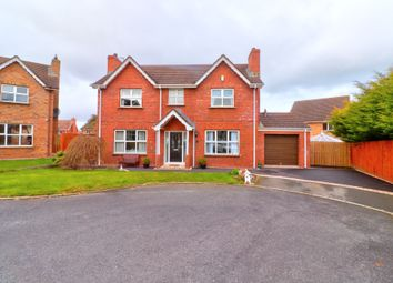 Thumbnail 4 bedroom detached house for sale in Robbys Point, Donaghadee