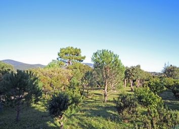 Thumbnail Land for sale in Grimaud, Grimaud (Commune), Grimaud, Draguignan, Var, Provence-Alpes-Côte D'azur, France
