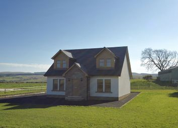 Thumbnail 4 bedroom property for sale in Hollybush, Ayr