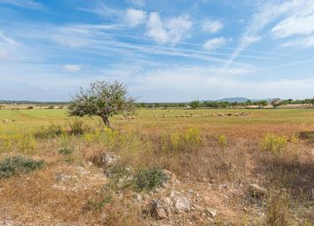 Thumbnail Land for sale in Santanyi, Balearic Islands, Spain, Santanyí, Majorca, Balearic Islands, Spain