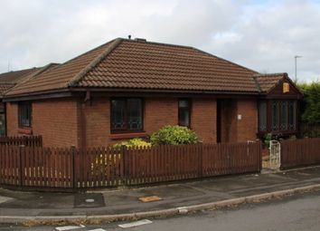 Thumbnail 2 bed detached bungalow to rent in Hollybush Drive, Sketty, Swansea