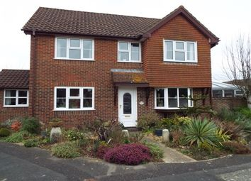 Thumbnail 4 bed property to rent in Horsecroft, Romsey