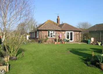 Thumbnail 4 bed detached bungalow for sale in Head Lane, East Stour, Gillingham, Dorset