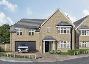 Thumbnail 5 bed detached house for sale in Malvern Place, Stevenage, Hertfordshire