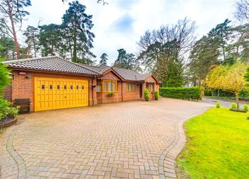 Thumbnail 4 bed bungalow for sale in Heathermount Drive, Crowthorne, Berkshire