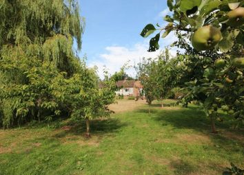 Thumbnail 4 bed detached bungalow for sale in Church Hill, Beccles Road, Haddiscoe, Norwich
