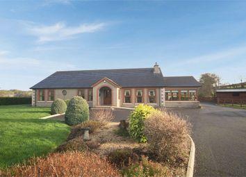 Thumbnail 4 bed detached bungalow for sale in Katesbridge Road, Dromara, Dromore, County Down