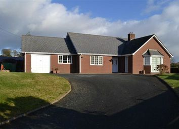 Thumbnail 3 bedroom detached bungalow to rent in Plas Newydd, Dolfor, Newtown, Powys