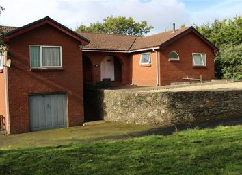 Thumbnail 4 bed detached bungalow for sale in Penclawdd Road, Penclawdd, Swansea